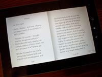 Chapters released its newest addition to its line of e-readers this month, the Kobo Vox Colour